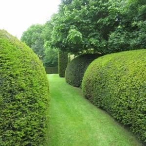 Cover afbeelding voor de tuin te Lubbeek