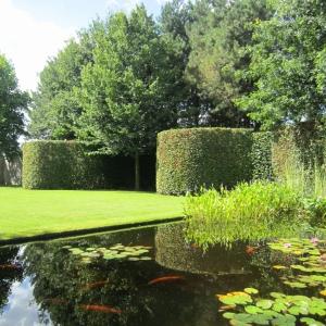 Cover afbeelding voor de tuin te Lille