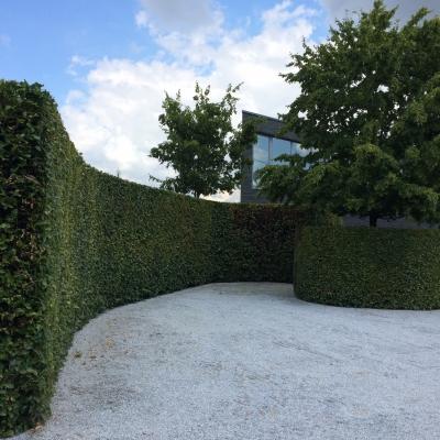 Cover afbeelding voor de tuin 2 te Mechelen